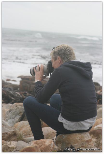 1-Cape Town 2015 Wenchy Jan Dec 232